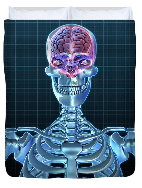 Human Skeleton And Brain, Artwork Duvet Cover