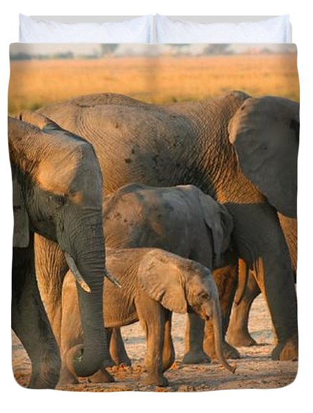 Duvet Cover featuring the photograph Kalahari Elephants by Amanda Stadther