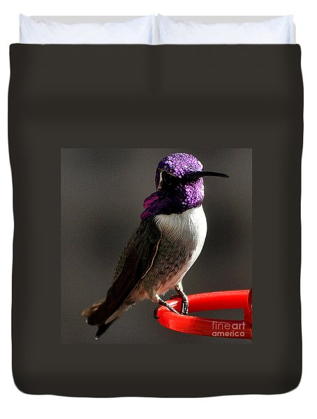 Duvet Cover featuring the photograph Male Costa's On Perch by Jay Milo