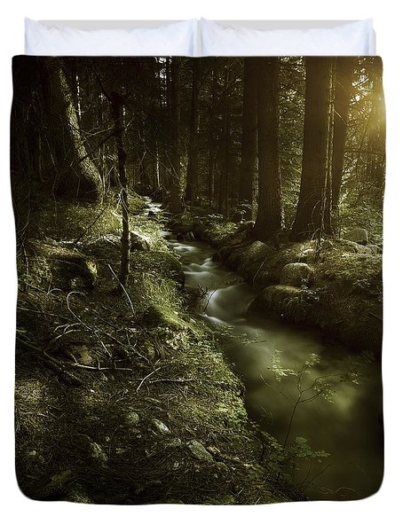 Small Stream In A Forest At Sunset Duvet Cover by Evgeny Kuklev