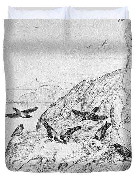 Blackburn Birds, 1895 Duvet Cover