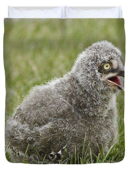 Baby Snowy Owl Duvet Cover by JT Lewis