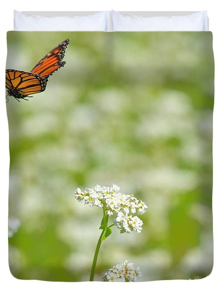 Butterfly Duvet Cover by Dacia Doroff