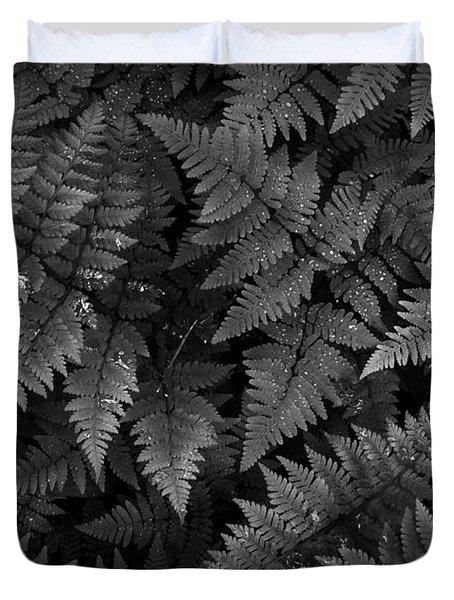 Ferns Duvet Cover by Steve Patton
