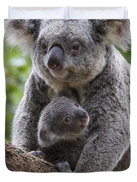 Koala Mother And Joey Australia Duvet Cover by Suzi Eszterhas