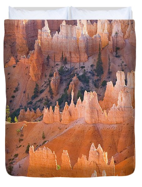 Sandstone Hoodoos In Bryce Canyon  Duvet Cover