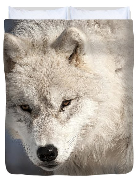 Arctic Wolf Pup Duvet Cover by Wolves Only