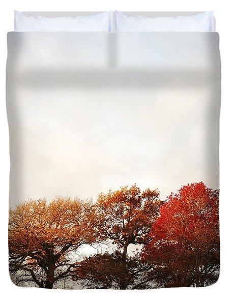 Autumn Duvet Cover by Les Cunliffe