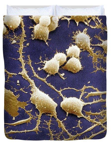 Dendrites Duvet Cover