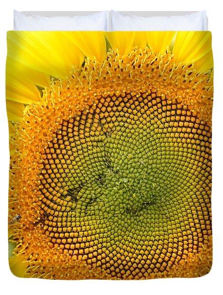 Sunflower Duvet Cover by Dacia Doroff