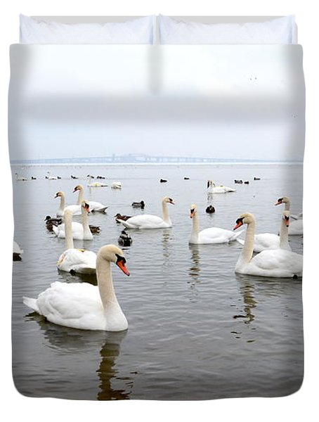 60 Swans A Swimming Duvet Cover by Laurel Best