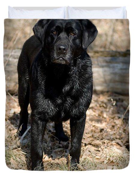 Black Labrador Retriever Duvet Cover by Linda Freshwaters Arndt
