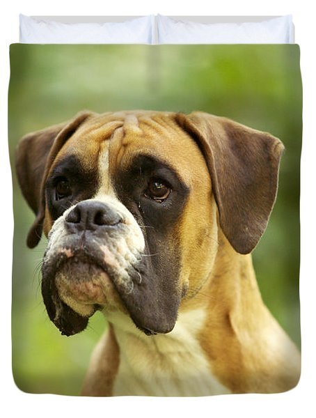 Boxer Dog Duvet Cover by Jean-Michel Labat