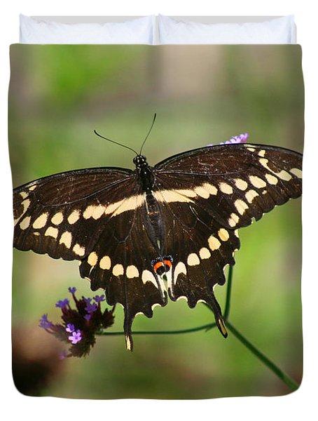 Giant Swallowtail Butterfly Duvet Cover by Karen Adams