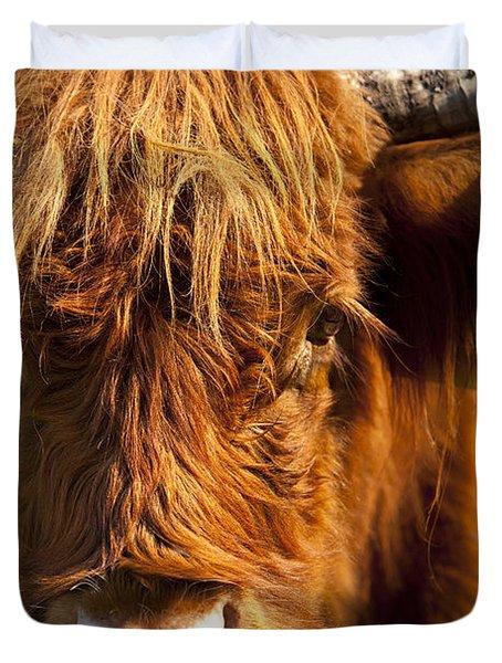 Highland Cow Duvet Cover by Brian Jannsen