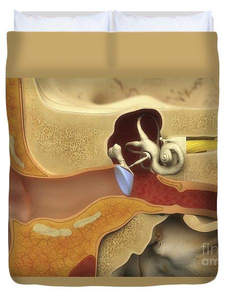 Ear Anatomy Duvet Cover