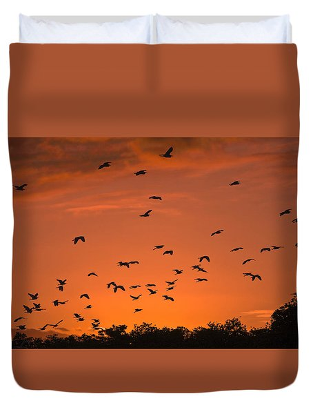 Birds At Sunset Duvet Cover