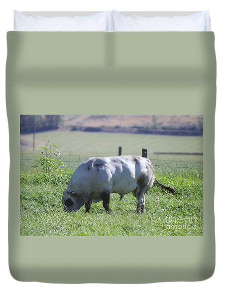 A Big Big Bull  Duvet Cover by Jeff Swan