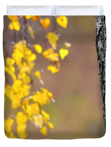 A Birch At The Lake Duvet Cover by Tommytechno Sweden