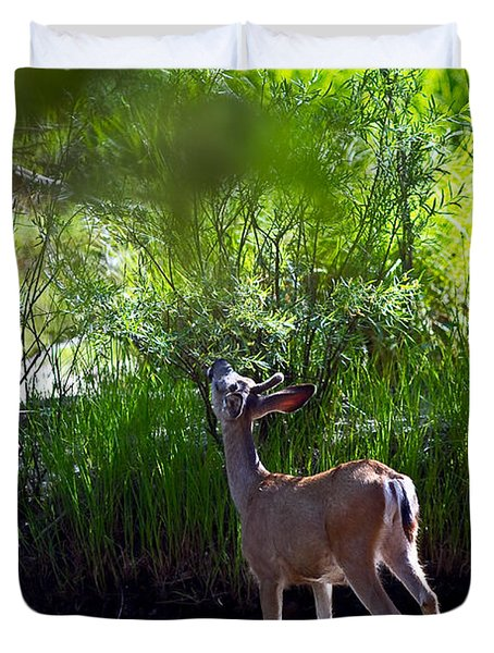 A Buck Feeding Duvet Cover