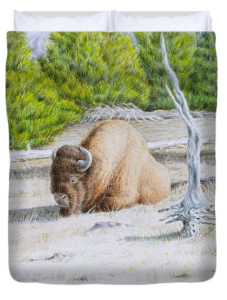 A Buffalo Sits In Yellowstone Duvet Cover