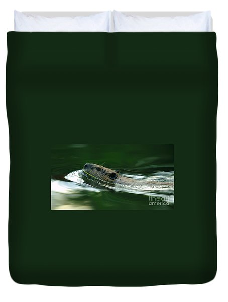 A Busy Beaver  Duvet Cover by Jeff Swan