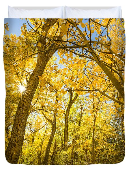 A Canopy Of Aspens At Mcgee Creek In The Eastern Sierras Duvet Cover