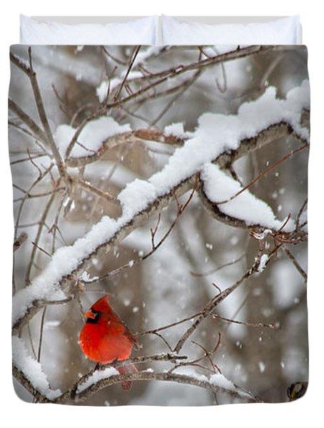 A Cardinal Snow Duvet Cover