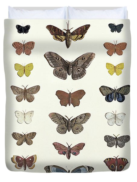 A Collage Of Butterflies And Moths Duvet Cover