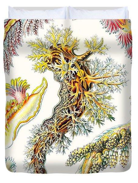 A Collection Of Nudibranchia Duvet Cover