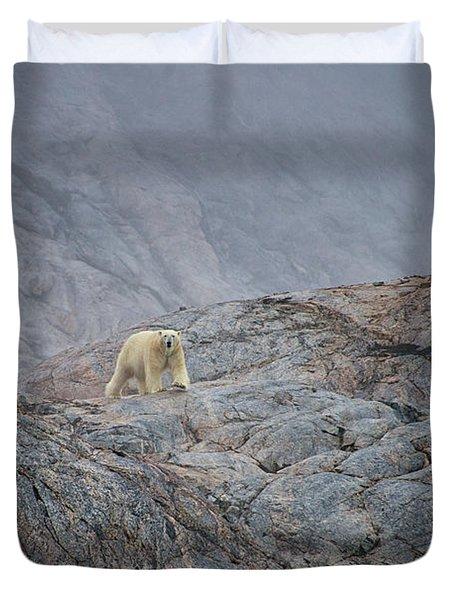 A Curious Polar Bear Approaching A Boat Duvet Cover