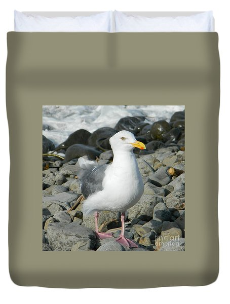 Duvet Cover featuring the photograph A Curious Seagull by Chalet Roome-Rigdon