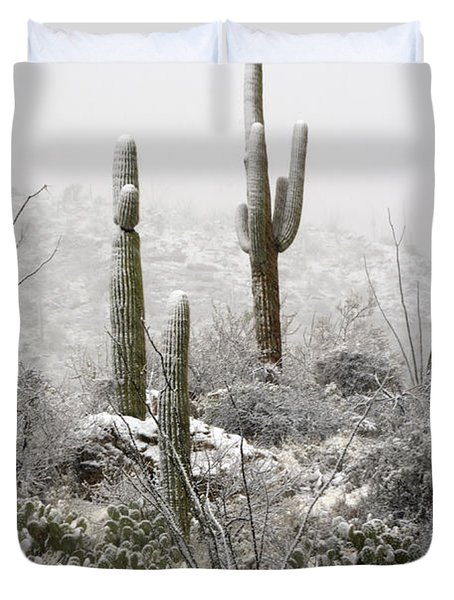 A Desert Snow Day  Duvet Cover by Saija  Lehtonen