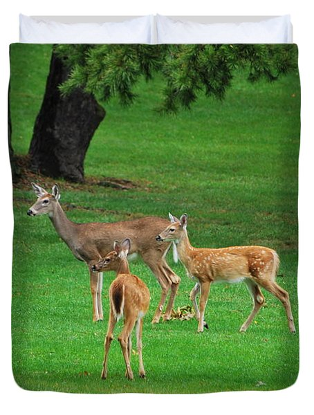 Duvet Cover featuring the photograph A Doe And Her Twin Fawns by Bob Sample