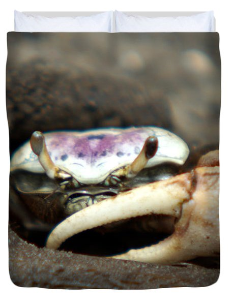A Fiddler Crab Around Hilton Head Island Duvet Cover
