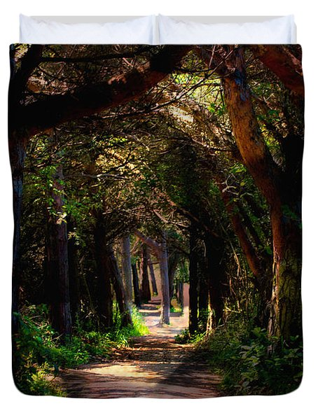 A Forest Path -dungeness Spit - Sequim Washington Duvet Cover