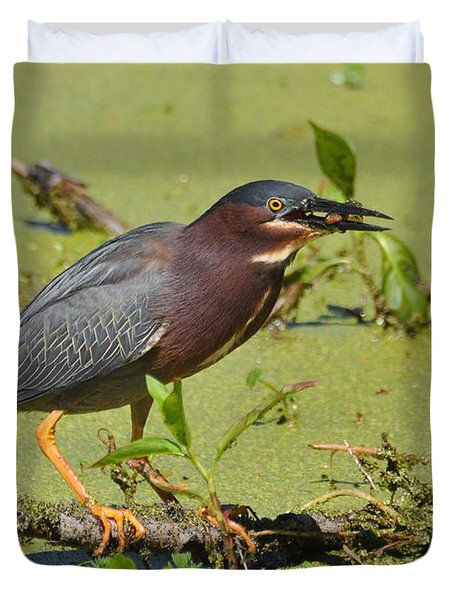 Duvet Cover featuring the photograph A Greenbacked Heron's Breakfast by Kathy Baccari