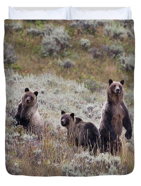 A Grizzly Bear With Its Two Cubs Duvet Cover