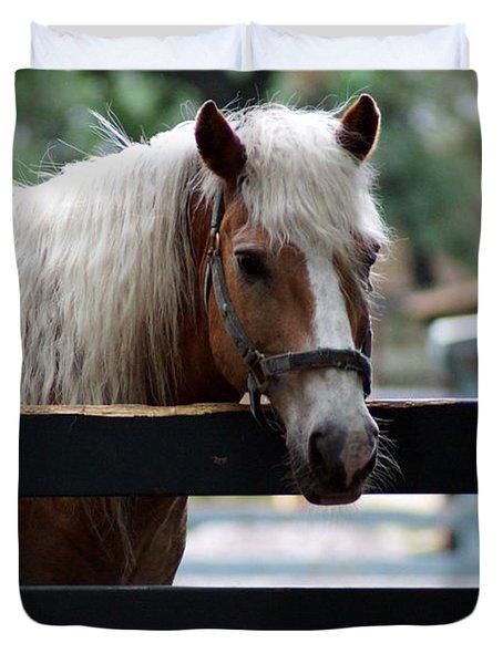 A Hilton Head Island Horse Duvet Cover by Kim Pate
