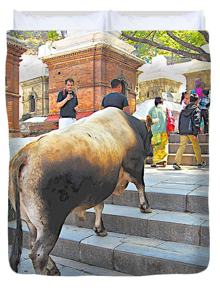 A Holy Cow Climbing Steps From Bagmati River In Kathmandu-nepal  Duvet Cover