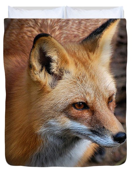 Duvet Cover featuring the photograph A Little Red Fox by Kathy Baccari