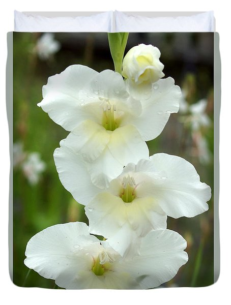 A Lovely White With A Hint Of Yellow Gladiolus Duvet Cover by Kim Pate