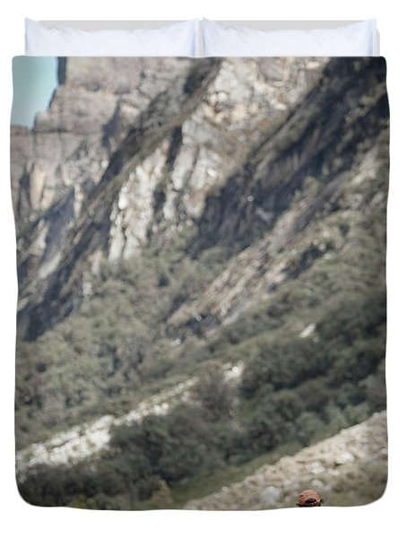 A Man Trekking In The Quebrada Ishinca Duvet Cover