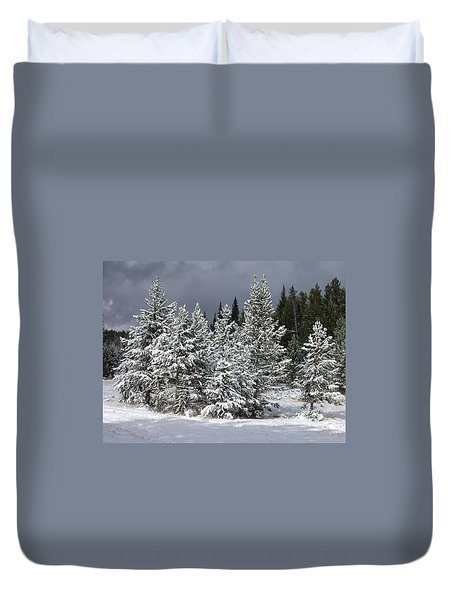 A Patch Of Sun Duvet Cover by Shane Bechler