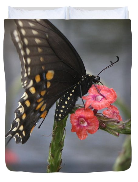 Duvet Cover featuring the photograph A Pause In Flight by Judith Morris