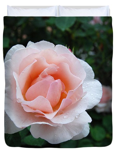 A Pink Rose For You Duvet Cover by Eva Kaufman