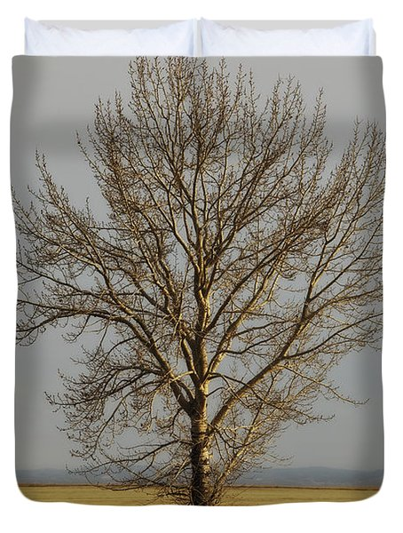 A Poplar Tree By The Side Of A Gravel Duvet Cover by Roberta Murray