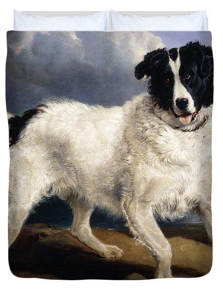 A Portrait Of Neptune Duvet Cover by Sir Edwin Landseer