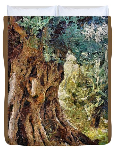 A Really Old Olive Tree Duvet Cover by Dragica  Micki Fortuna