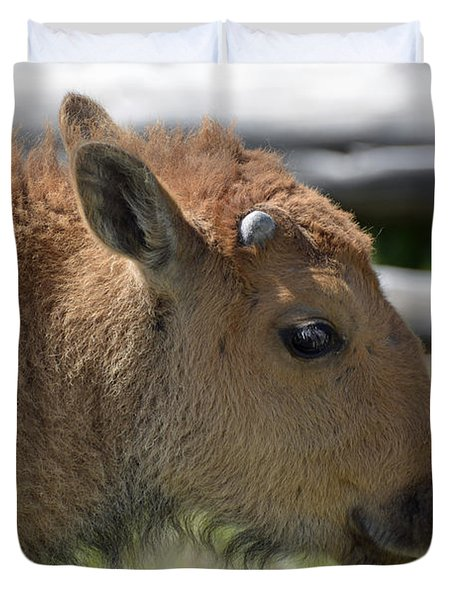 A Red Dog In Yellowstone Duvet Cover by Bruce Gourley